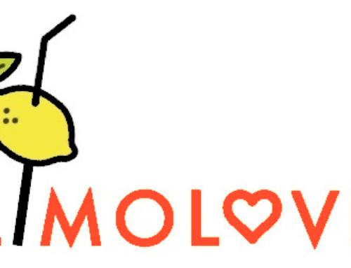 Webdesign für Limo-Catering